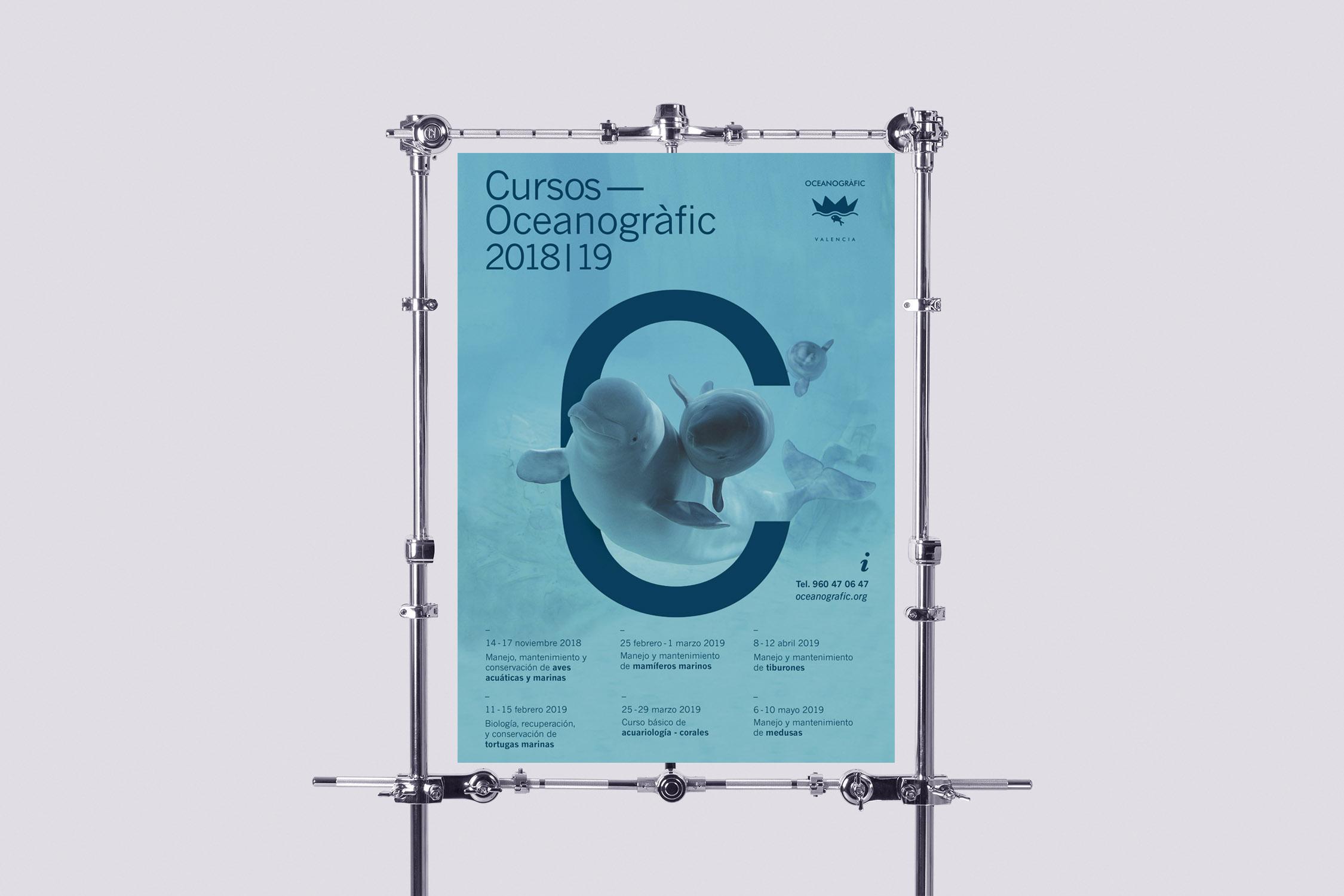 Curso Oceanogràfic mamíferos Diseño Gráfico