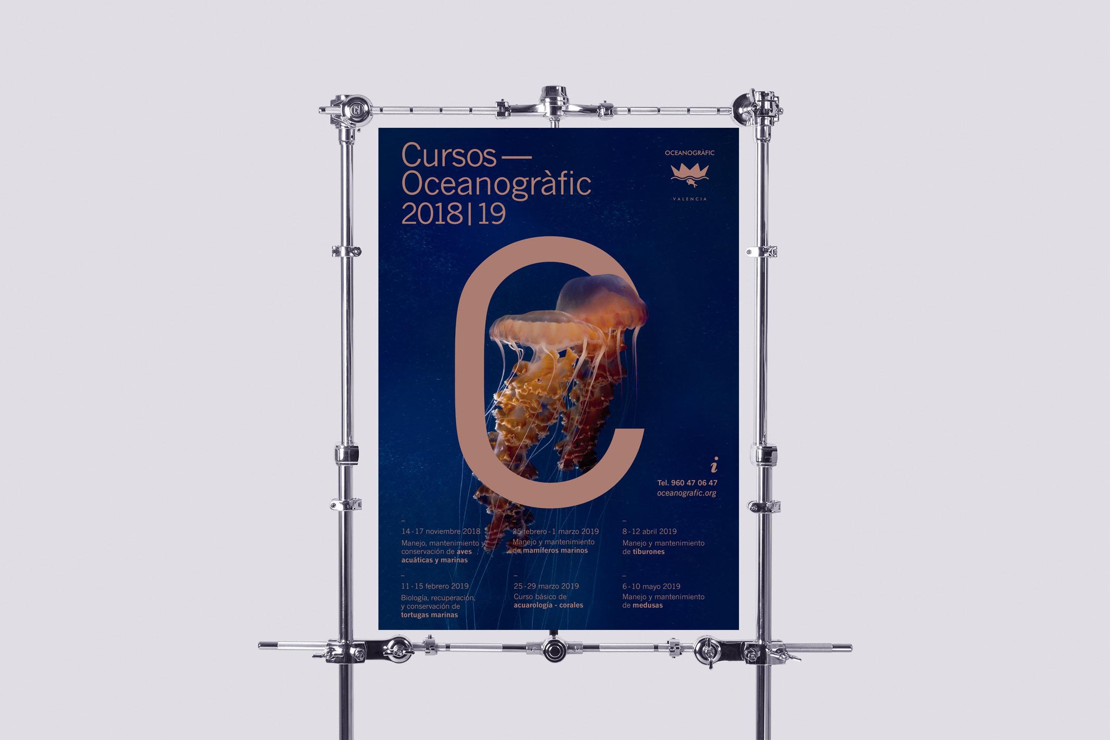 Curso Oceanogràfic medusas Diseño Gráfico
