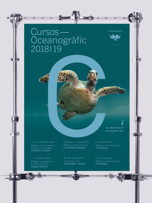 Cursos Oceanografic Tortuga